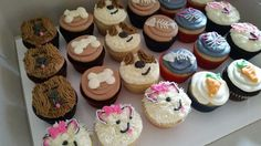 Secret life of pets cupcakes for birthday party made by Brooke's Custom Occasions  https://m.facebook.com/story.php?story_fbid=928010887325548&substory_index=0&id=683519788441327
