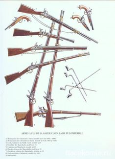 Weapons of the French Imperial Guard. Napoleonic War Plates.   nacekomie.ru
