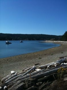 Rebecca Spit on Quadra Island This is one of the most idyllic places we have ever been.kayaking and beachcombing are wonderful. Sunshine Coast Bc, Discovery Island, Geocaching, Vancouver Island, British Columbia, Summer 2015, Driftwood, Kayaking, Places Ive Been