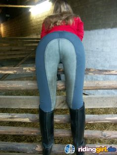 Equestrian Girls, Equestrian Outfits, Equestrian Style, Equestrian Fashion, Horse Riding Pants, Riding Boots, Horseback Riding Outfits, Rodeo Girls, Country Women