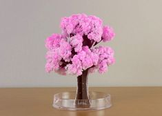 How to make DIY paper tree? - Do you enjoy doing different things or making things that attracts you by yourself. If yes then have you ever tried making a paper tree? How To Make Paper Flowers, Paper Flowers Wedding, Paper Flowers Diy, Flower Bouquet Wedding, Diy Furniture Easy, Furniture Ideas, 3d Paper, Paper Trees, Tissue Paper