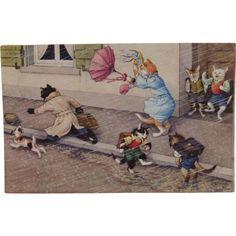 Alfred Mainzer Dressed Cats Postcard Max Kunzli Illustrated Zurich, Switzerland Rain Storm