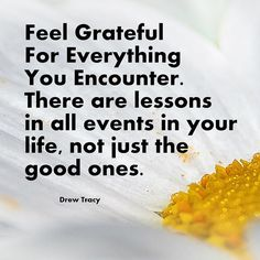 Feel grateful for th