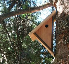 Tipetoe House - For chickadees, nuthatches, wrens, warblers and other songbirds