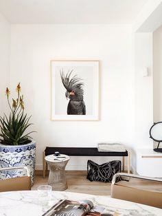 Inside a Streamlined Home With a Sense of Humor via @domainehome