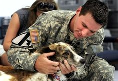 Story about a trio of stray dogs that defended a troop of soldiers in Afghanistan from a suicide bomber <3