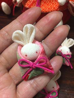Idea: Bunny in bag