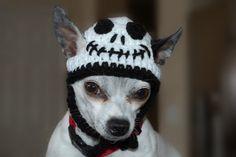 19 best dog stuff images on pinterest dog accessories dog stuff jack skeleton dog hat solutioingenieria Images