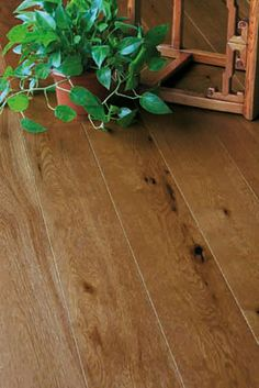 hand scraped engineered wood flooring | Tuscan Elite Oak Barley Hand Scraped Engineered Wood Floor - Hamiltons ...