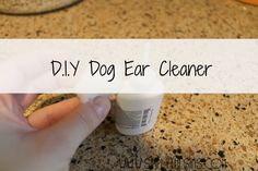 Dog Ear Cleaner - distilled white vinegar, water and tea tree oil (no harsh ingredients) - Pintogo Space Homemade Dog Treats, Pet Treats, Dog Ear Cleaner, Essential Oils Dogs, Cat Brain, Dog Grooming Tips, Dog Nails, Ear Cleaning, Distilled White Vinegar