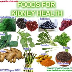 Best things for kidney health fruits good for kidney,how dialysis works how long can you live on dialysis with kidney failure,is chronic kidney disease curable kidney cleanse products. Food For Kidney Health, Health And Nutrition, Kidney Foods, Spirulina, Kidney Detox Cleanse, Healthy Kidneys, Healthy Foods, Food Good For Kidneys, Diet Detox