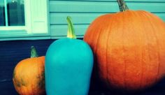 Teal Pumpkin Project™ Gains Momentum | SCRATCH OR SNIFF