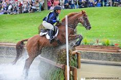 Learn more about the amazing OTTB that is taking Colleen Rutledge to 'new heights'.