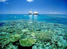 サンゴ礁と熱帯雨林の楽園「ウィットサンデー諸島」の休日 - TABIZINE 提供