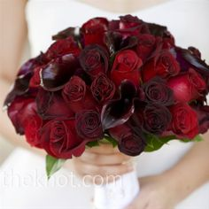 black magic roses, baccara roses, freedom roses, and burgundy calla lillies