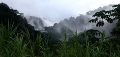 Carnet de voyage sur la route de Fortuna au Costa-Rica Amerique Centrale