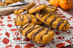Halloween Treat: Pumpkin Chocolate Protein Bars - Natural Vitality Living - Paleo so sub flax eggs and canned cannellini beans for the eggs and protein powder. Might have to add almond or coconut flour to make up the slack