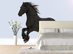 Bedroom Ideas with Black horse Wall Mural Horse Wall Murals Inspiration Decals
