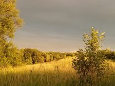 Bronte creek Oakville Ontario..