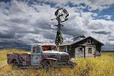 Dodge Pickup Trucks, Lifted Trucks, Old Trucks, Truck Drivers, Lifted Chevy, Dually Trucks, Jeep Pickup, Semi Trucks, Pickup Camper