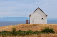 The Little House That Is at East Point on Saturna Island by Terrill Welch East Point, Canadian Art, Lone Wolf, Still Life Photography, View Source, British Columbia, West Coast, Trail, Road Trip