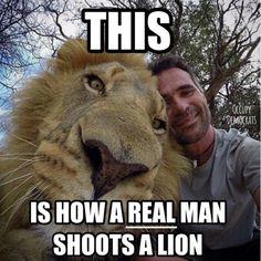 Kevin Richardson, the lion whisperer <3