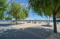 Sugar Beach by Claude Cormier Associés. Parking lot turned into a waterfront park in Toronto.