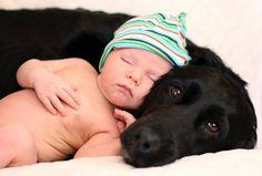 22 fotos maravilhosas de cães e crianças (1)