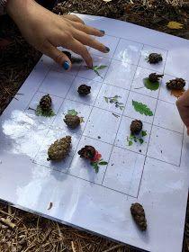 OpenIdeat: 5.-6. luokka: Metsä Plastic Cutting Board, Earth, World
