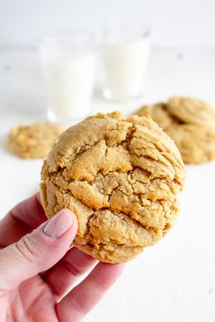 My Name Is Snickerdoodle Recipes Chewy Peanut Butter Cookies Chocolate Chip Cookies, Healthy Peanut Butter Cookies, Classic Peanut Butter Cookies, Butter Cookies Recipe, Yummy Cookies, Cookies Vegan, Cookies Soft, Peanut Cookies, Almond Butter Cookies
