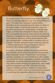 Butterflys are almost positive, whether you see them in a dream, in nature, or as a spirit or totem animal. meaning Butterfly Spirit Animal, Spirit Animal Totem, Animal Spirit Guides, Butterfly Quotes, Animal Totems, Butterfly Symbolism, Butterfly Meaning, Animal Symbolism, Spiritual Meaning
