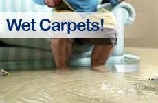 Get the foremost effective Water broken Carpet service in municipality just by creating one fast get into 1300 309 276. We've Associate in nursing inclination to substantiate 100% shopper satisfaction.