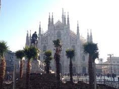 """Milano o Beirut? Video e immagini """"choc"""" delle palme a Piazza Duomo per volere di Starbucks"""