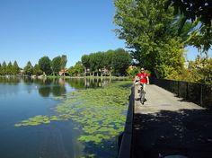 Mantova #Mantova #Mantua #arte #art #cultura #culture #Italia #Italy #bici #cycling
