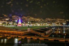 #reycisconatal #Funchal #christmas #madeira #Reycisco #friends #smile #follow4follow #instamood #family #nofilter #amazing #Canon #night #sun #sunset #selfie #night#natal ********* #love #passion