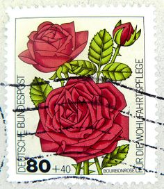 stamp Germany 80pf. red rose Rose flower Blume Bourbonrose postage charity issue 80 + 40 pfennig Deutschland germany stamp allemagne poste timbre bollo selo special issue stamp, commemorative issue, émission commémorative by stampolina, via Flickr