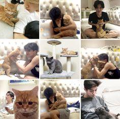 Luhan + His Cats moodboard