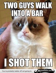 Grumpy Cat: two guys walk into a bar...