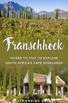 Stunning Franschhoek: The Best Base for South Africa's Cape Winelands - Safari Photography Africa Travel, Morocco Travel, Italy Travel, Koh Tao, Adventure Is Out There, Dream Vacations, Travel Around The World, Adventure Travel, Travel Inspiration