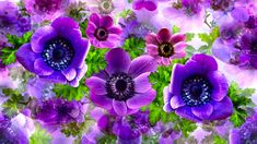 Flower Photos, Trees To Plant, Most Beautiful, Flora, Herbs, Plants, Pink, Photography, Photograph