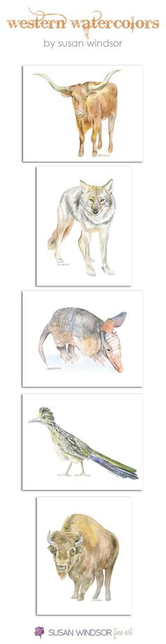 Watercolor Texas Animal Art Prints Western by SusanWindsor on Etsy