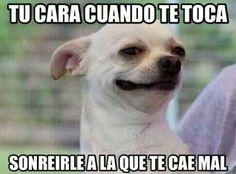 ¡A todas nos ha pasado! #FrasesDivertidas #Humor #Meme