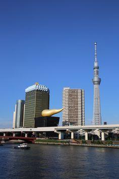 Tokyo City, Tokyo Japan, Kyushu, Okinawa, Hiroshima, Countries Around The World, Around The Worlds, Tokyo Skyline, Japanese Tree