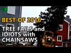 All new and rare! Tree Fails and Idiots with Chainsaws S02E01 - YouTube