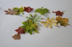 Herbst, basteln, Konfetti, Blätter-Konfetti, Basteln mit Kindern, DIY im Herbst, Kinderbarteln, Familienblog, Schwesternliebe