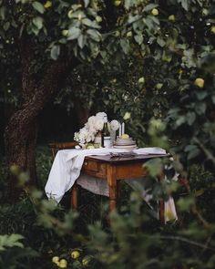 Outdoor Dining, Outdoor Spaces, Foto Art, Jolie Photo, Slow Living, Gerbera, Outdoor Photography, Wabi Sabi, Dream Garden