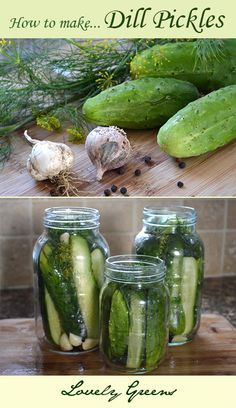 Recipe for crunchy Dill Pickles ~ easy to make and delicious!