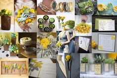 Succulents and yellows and greys ...