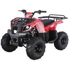 21 Best Cheap ATV quad for adult images in 2013 | Atv, Quad