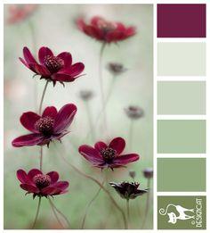 Mauve Beauty - Plum, Mauve, pink, Green, leaf - Designcat Colour Inspiration Pallet